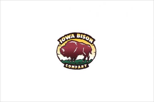 IOWA-BISON