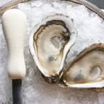 Pangea Shellfish Pemaquid Oyster