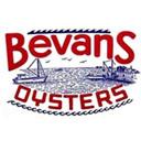 Bevans Oyster