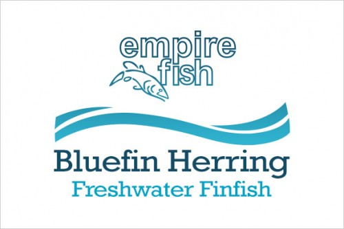 freshwater-finfish-bluefin-herring