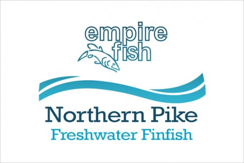 freshwater-finfish-northern-pike