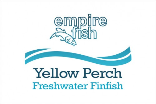 freshwater-finfish-yellow-perch