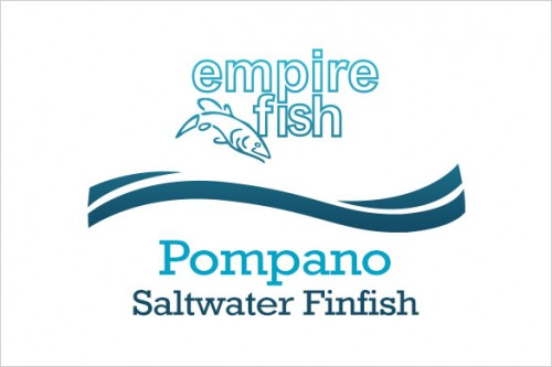 saltwater-finfish-pompano