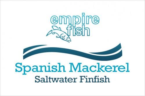 saltwater-finfish-spanish-mackerel